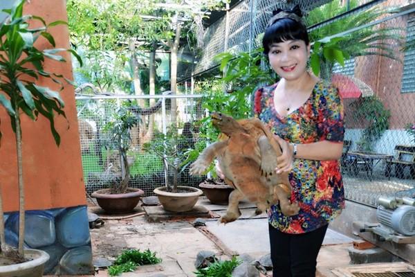 Đắk Lắk: Lạ đời, 20 năm nuôi đàn rùa 60 con chỉ để... ngắm