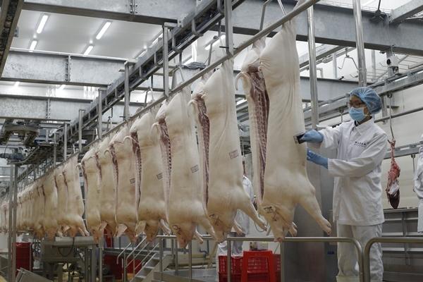 Hiểu về thịt mát sao cho đúng?