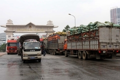 VN logistics can benefit from growing economy