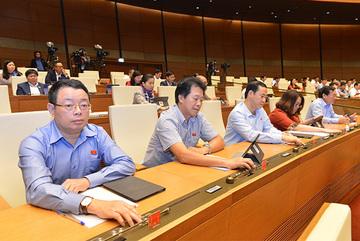 Chính phủ tự chọn nhà đầu tư, không bảo lãnh vốn làm sân bay Long Thành