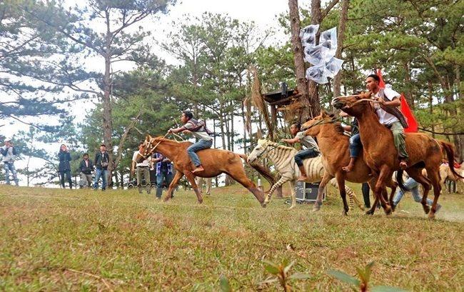 Da Nang proposes US$2 billion horse-racing track, golf course