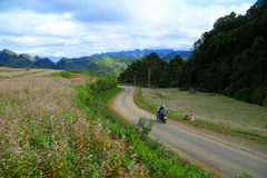 Ha Giang peaks in top 20 dream destinations