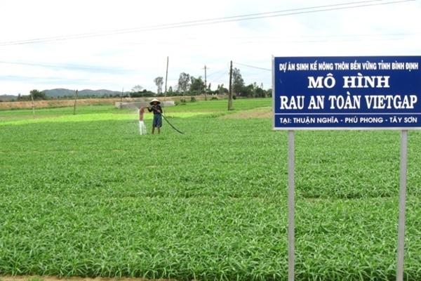 Bình Định có 77/121 xã đạt chuẩn nông thôn mới giai đoạn 2011-2020