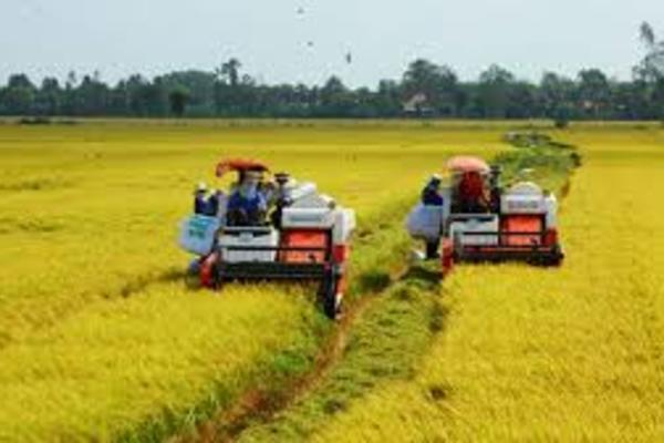 Các tỉnh phía Nam huy động hơn 930.000 tỷ đồng xây dựng nông thôn mới