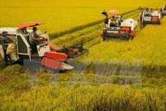 """Vai trò của ngành nông nghiệp đặc biệt quan trọng trong điều kiện """"bình thường mới"""""""