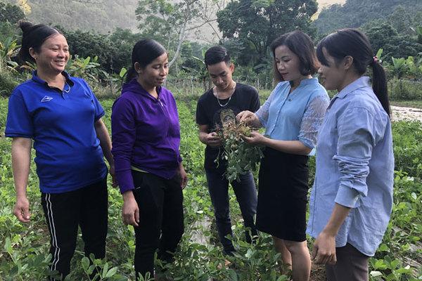 Phát triển Nông thôn mới thời gian tới phải tập trung các nhóm giải pháp tổng hợp