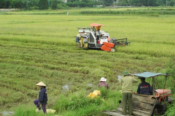 Ứng dụng cơ giới hóa sản xuất nông nghiệp xây dựng NTM
