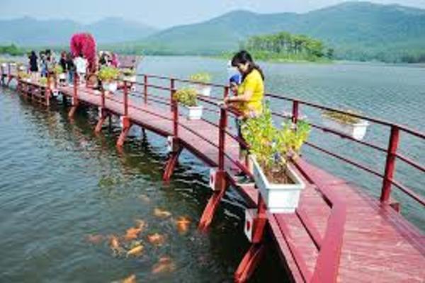NTM Quảng Ninh: Huy động nguồn vốn ODA hỗ trợ phát triển hợp tác xã