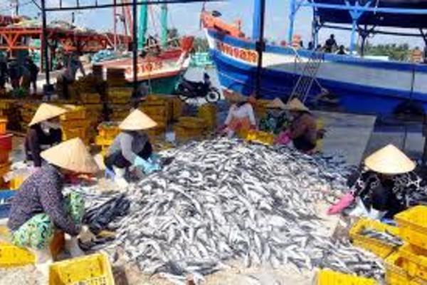 NTM Kiên Giang: Đầu tư lớn xây dựng hạ tầng kỹ thuật phục vụ nghề cá