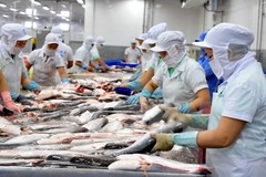 Vietnam's aquatic export revenue likely to miss 2019 target