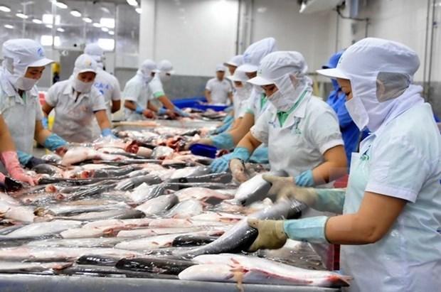 Vietnam's aquatic export revenue likely to miss 2019 target
