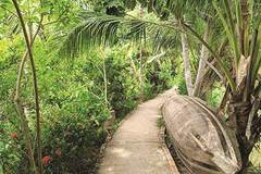 Con Son Islet achieves success in eco-tourism development
