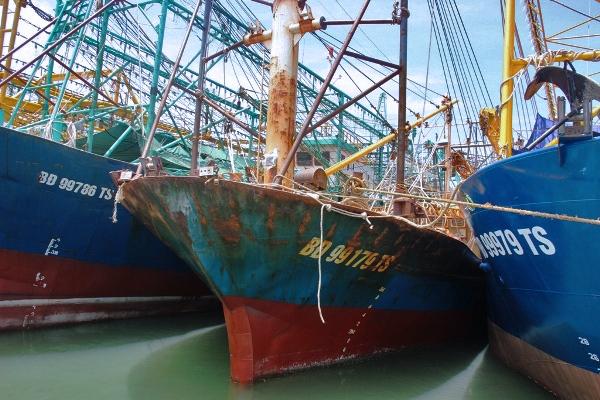 Bị bảo hiểm 'quay lưng', hàng loạt tàu vỏ thép nằm bờ thoi thóp