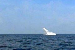 Iran khoe sản xuất hàng loạt tên lửa sát thủ phóng từ tàu ngầm