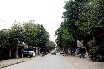 Phú Thọ đi đầu khu vực miền núi phía Bắc về xây dựng nông thôn mới