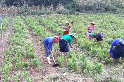 Nông thôn mới ở Xín Mần: Phát huy nội lực, vượt mọi khó khăn, hoàn thành các chỉ tiêu