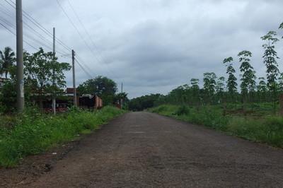 Thôn Hai Căn: Giúp người dân ổn định cuộc sống ở khu đất mới