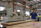 Kết quả lạc quan từ đào tạo nghề cho lao động nông thôn ở Huế