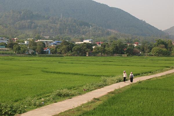 Xây dựng NTM: Huyện Phù Yên ưu tiên tiêu chí môi trường