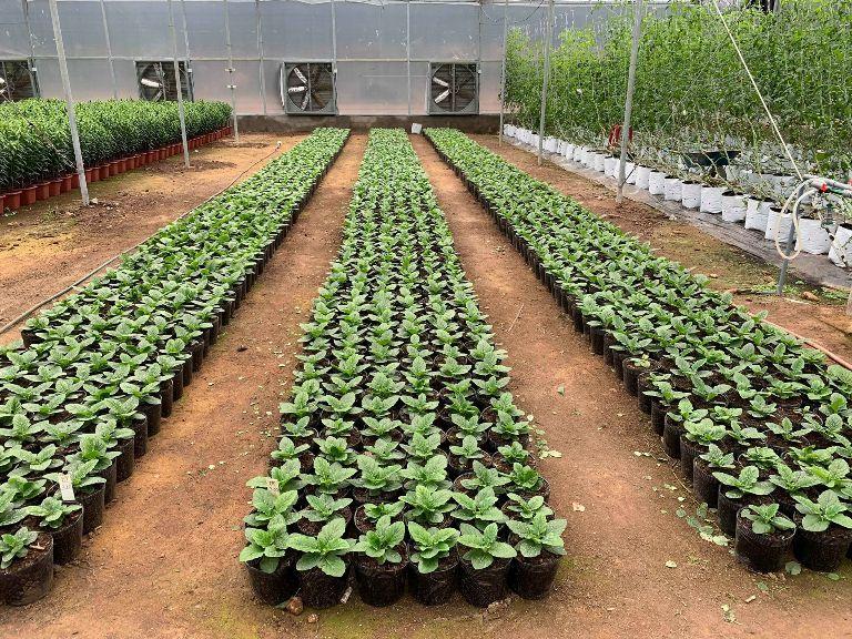 Đổi mới Quỹ hỗ trợ nông dân giúp người dân cải thiện đời sống
