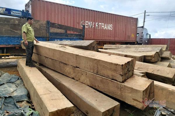 Clip mở thùng container, lộ hàng chục phách gỗ quý ở Đắk Lắk