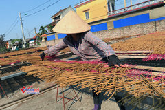 Hà Nội đào tạo nghề cho hơn 16.000 lao động nông thôn trong năm 2019