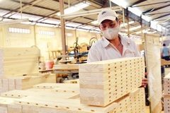 Vietnam needs 'FDI filter' for woodwork industry