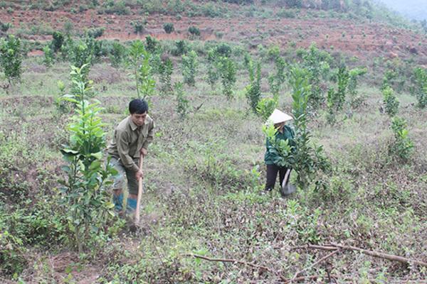 Xuân Nha tận dụng lợi thế, nâng cao đời sống nhân dân