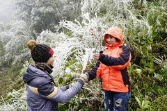 Dự báo thời tiết 4/12, Bắc Bộ rét cóng, bão số 7 vào Biển Đông