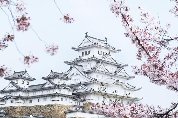Lâu đài Hạc Trắng trăm tuổi được người Nhật coi như quốc bảo