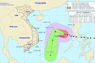 Biển động dữ dội, gần 100 tàu cá nằm trên đường đi của bão số 7