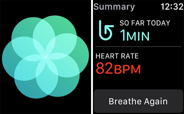 Cách đo nhịp tim bằng Apple Watch