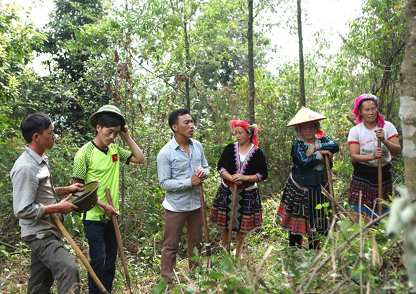 Vietnam's forest management sector to improve forest protection