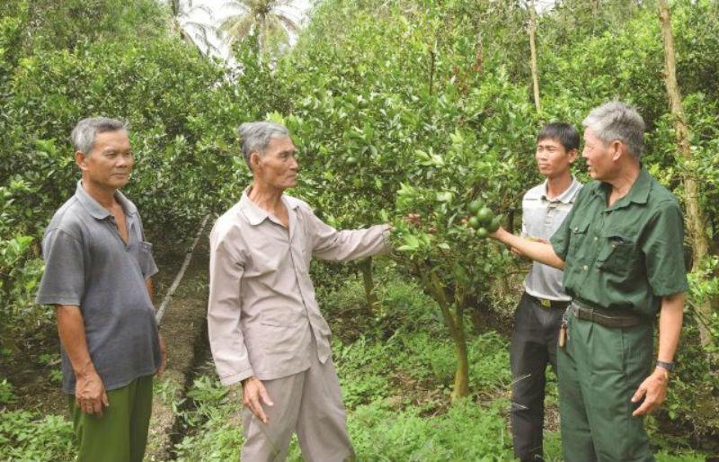 Nghệ An: Cựu chiến binh gương mẫu giúp nhau xóa đói giảm nghèo