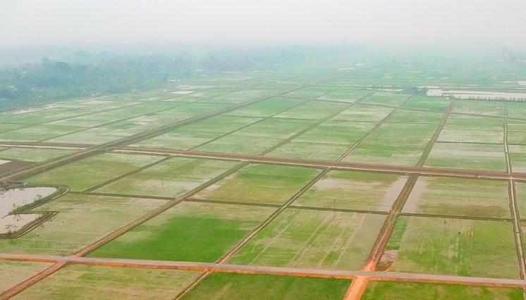 Phú Thọ: Thành quả xóa đói giảm nghèo từ một cuộc vận động thiết thực
