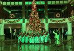 Christmas season comes to Da Nang, Hoi An