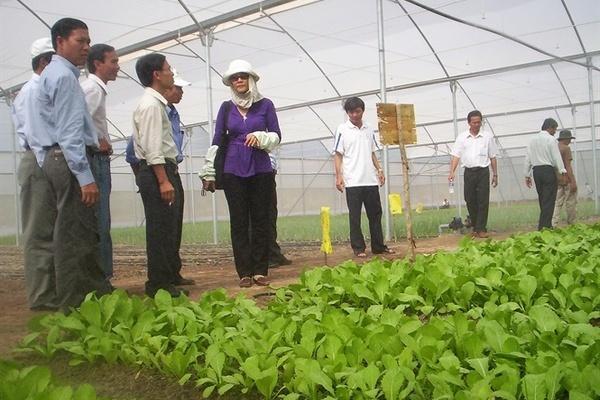 Khuyến khích hợp tác, liên kết để phát triển bền vững nông nghiệp nông thôn