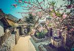Lost in Lo Lo Chai Village