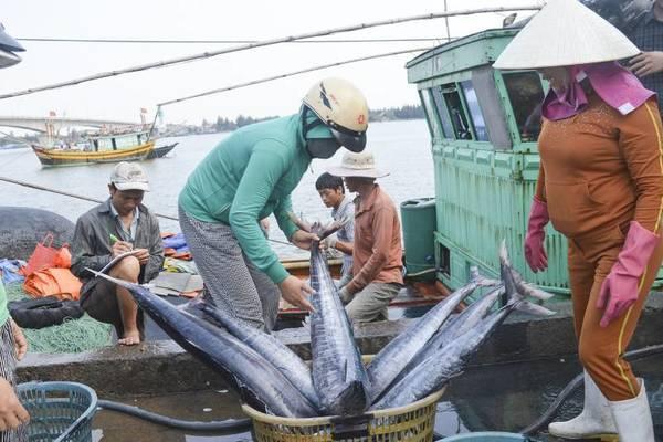 """Tuyên truyền chống khai thác IUU gắn với Chương trình """"CSB đồng hành với ngư dân"""""""
