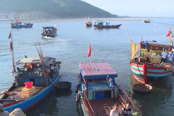 Hỗ trợ ngư dân có nhu cầu chuyển đổi chủ tàu do không đủ năng lực tiếp tục đánh bắt