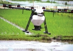 Drones now used by Vietnam's rice farmers