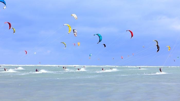 Sôi động Festival ván diều ở bãi biển Ninh Chữ