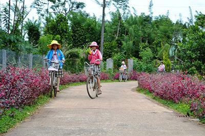 Xây dựng nông thôn mới, nhìn từ thành công của Đồng Nai