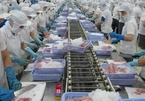 Additional five Vietnamese seafood firms eligible to export to Russia
