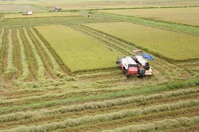 Thái Bình có thêm huyện thứ 3 đạt chuẩn nông thôn mới năm 2019