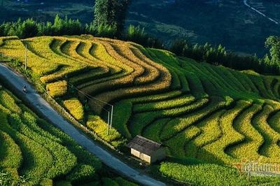 Lào Cai đã có 49 xã đạt chuẩn nông thôn mới