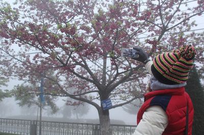 Dự báo thời tiết 9/12, Sa Pa 0 độ, Hà Nội khô hanh lạnh giá