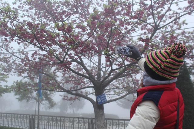 tin thời tiết,dự báo thời tiết,thời tiết,không khí lạnh,rét đậm