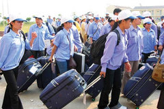 More than 132,000 Vietnamese go overseas for work in 2019