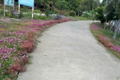 Hơn 50% xã của tỉnh Sóc Trăng đạt chuẩn nông thôn mới